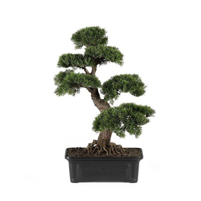 Cedar Bonsai Silk Plant 24 Inch