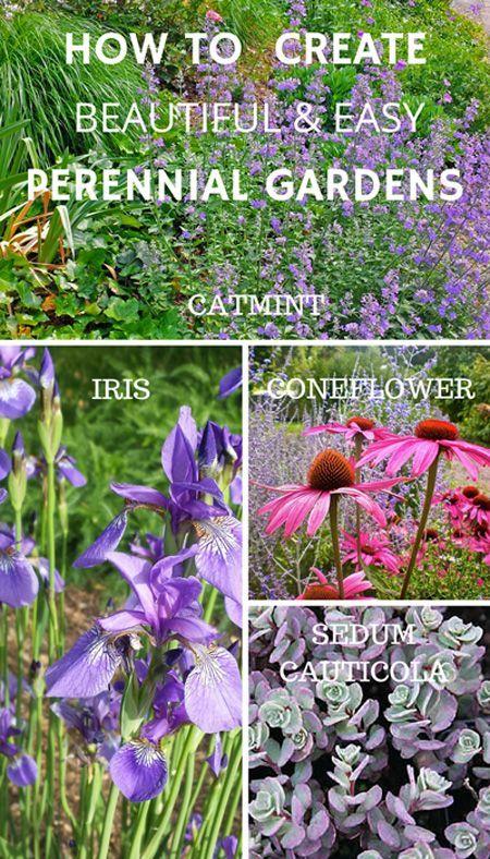 你如何创造一个伟大的四季花园设计?你使用哪种多年生的园林植物?这里有一些专业技巧和图片。