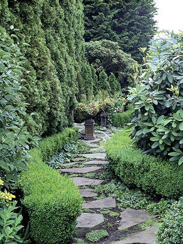 将常青树添加到您的院子里,创造一个全年的表演。了解如何使用这些植物进行景观设计。