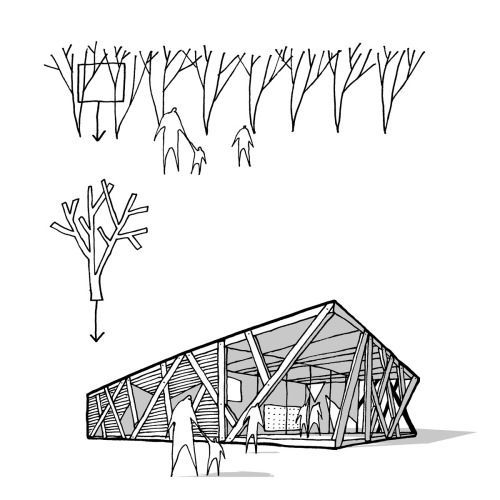 tree branches in modern outdoor pavilions - Google Search