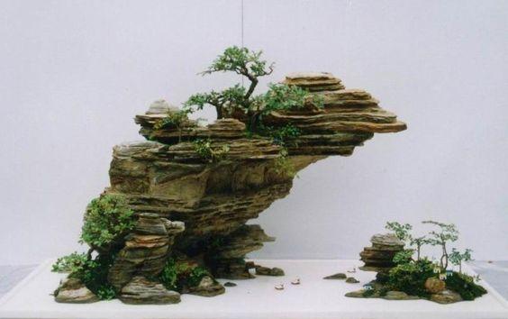 盆景树景观| Penzai,中国盆景,盆景
