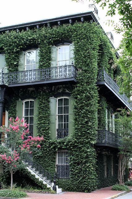 萨凡纳总是为万圣节做准备,西班牙苔藓遍布无数的绿树成荫的鹅卵石小径。这座城市有着令人难忘的优雅。湿度很重,古老的老房子作为时间的提醒。我可能只有5小时30分钟的时间
