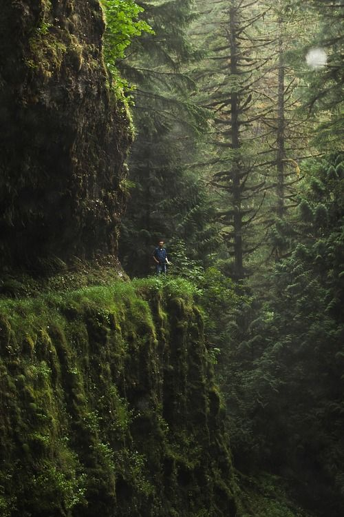 Eagle Creek Trail, Oregon | Chris Ebarb
