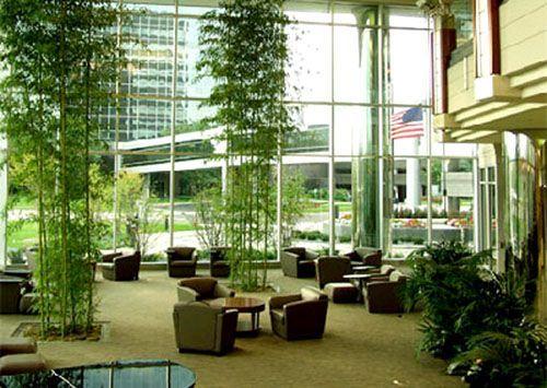 office atriums interiors - Google Search