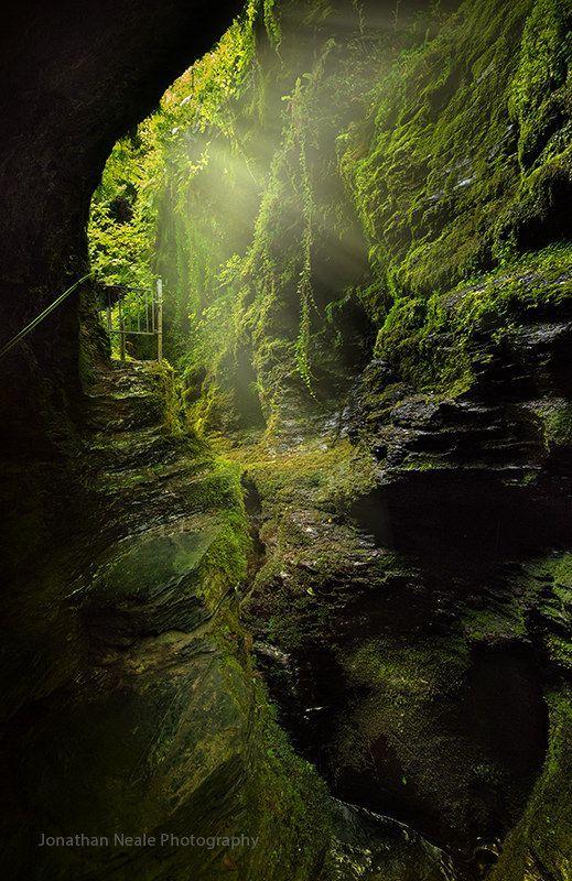 lydford gorge, dartmoor #nature More