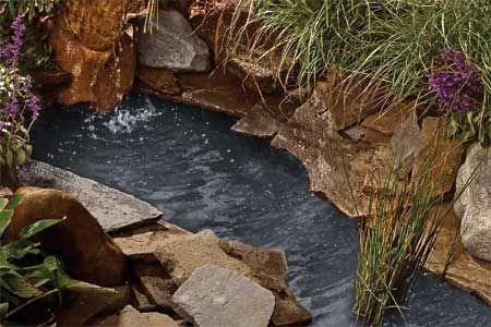 如何在短短六小时内建造一个自由形态的后院池塘