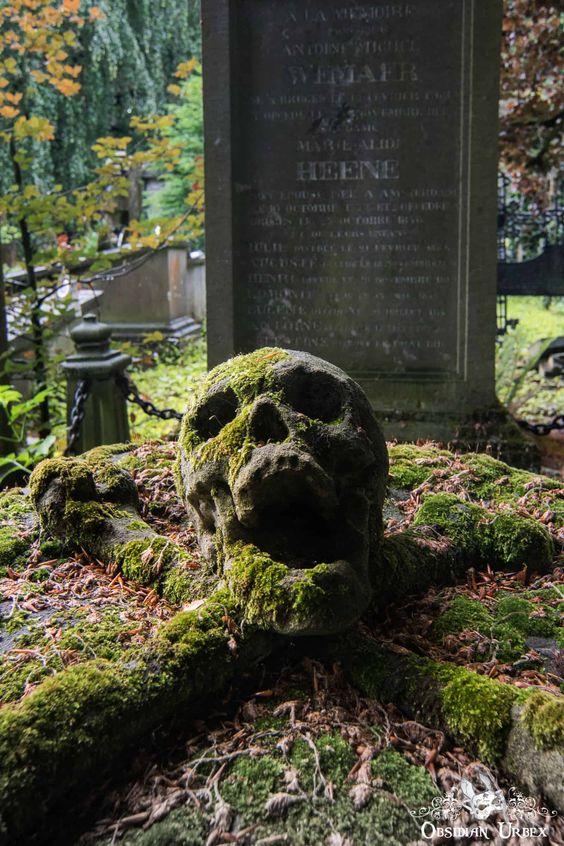 骷髅公墓已有200多年的历史,位于比利时城市的郊区。头骨的嘴巴在一个长达数世纪的无声尖叫中,在一个交叉的股骨骨头枕上休息。明亮的绿色苔藓覆盖墓碑,突出了空心眼窝和折磨鬼脸。