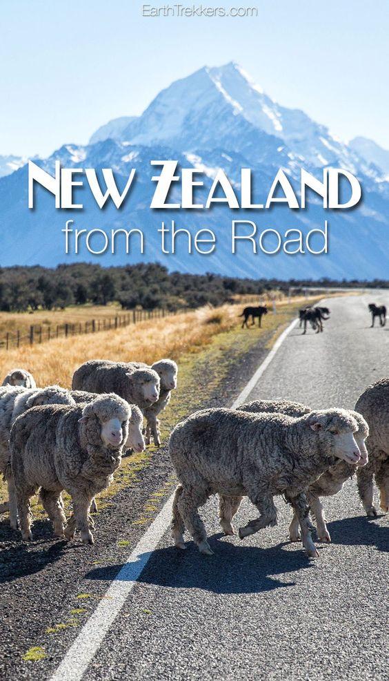 新西兰必须成为世界上最好的旅行之一。这里是我从路边拍摄的一些我最喜欢的照片。