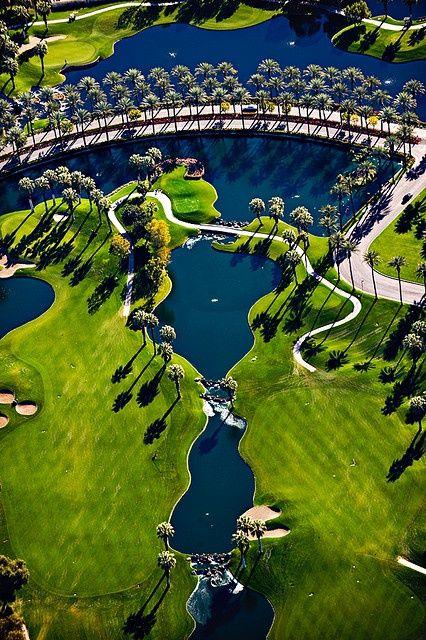 棕榈树林立的高尔夫球场驱动器通向万豪沙漠泉度假村。