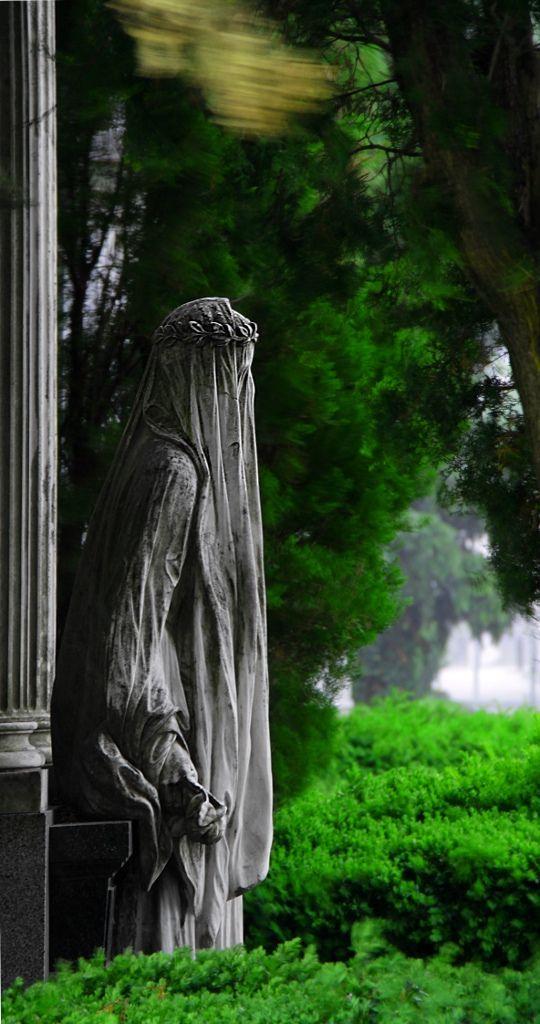 在维也纳中央公墓风暴中的面纱女人 - 在中央公墓在维也纳风暴中的面纱女人