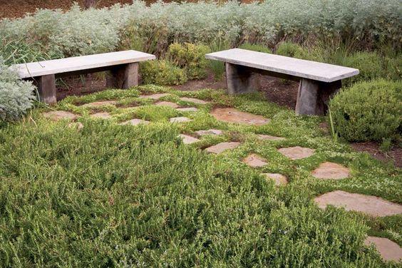 减少堆场工作,节省资金,维护环境低。用耐旱,低维护的草替代品替代您的传统草场。