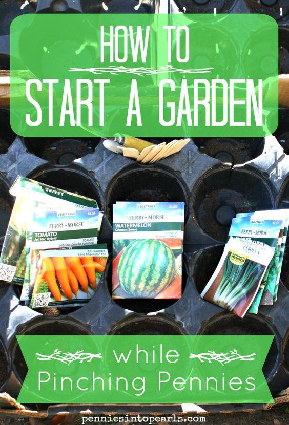 提示如何在廉价和廉价的基础上开办花园。如何开始花园到最便宜的方式可能!