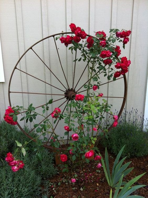 你丢弃的许多东西在花园里都很有用。如果你不相信看到这17个最佳Upcycled格子花园的想法。