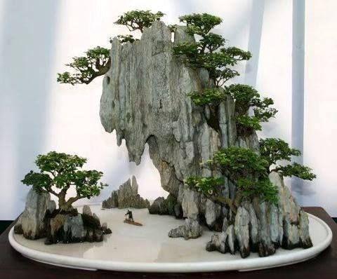 simonsaquascapeblog:鼓舞人心:萧光花盆景神奇景观您可以在这里观看更多令人叹为观止的盆景艺术