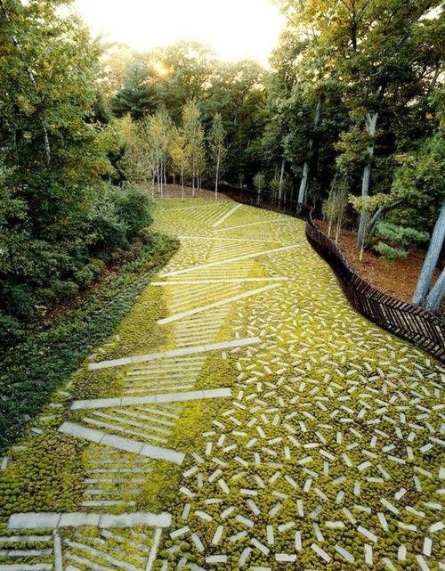 由克里斯托弗贝克拍摄的一个美丽的草坪替代品。