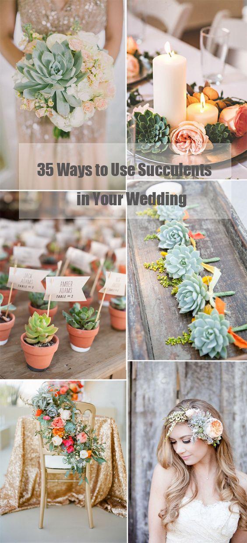 计划在婚礼当天添加一些自然细节?然后多汁的植物会帮助你获得完美的外观。从花束,桌子装饰,中间件,蛋糕甚至新娘配饰,多肉植物的不同......