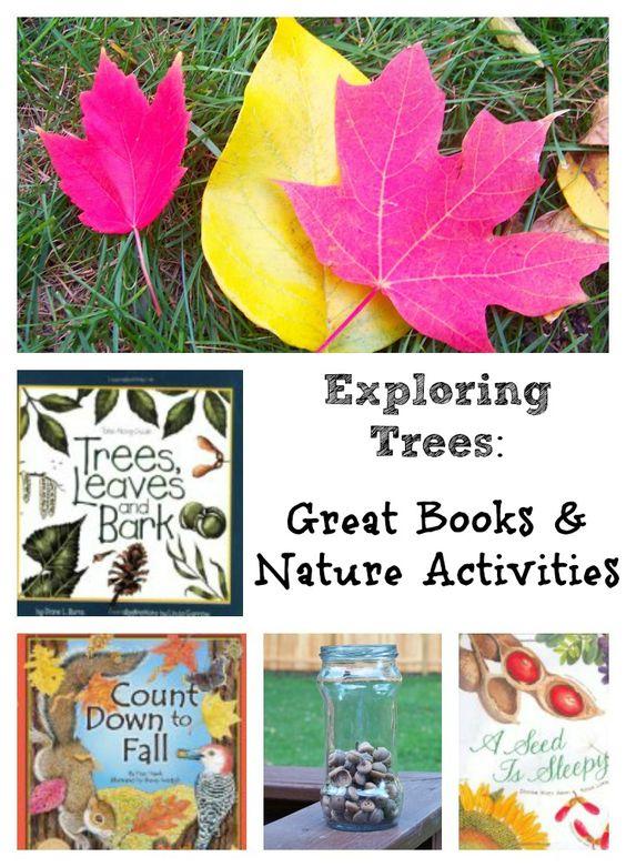 本周我们的主题是Leaf&Seeds  - 在秋季探索树木是一项伟大的自然和科学活动!在您的院子里使用推荐书籍之一进行自然狩猎,或使用树叶和种子创造出精美的工艺。