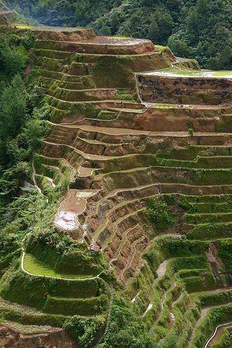 UNESCO World Heritage Site - Banaue rice terraces, Philippines Cordilleras.