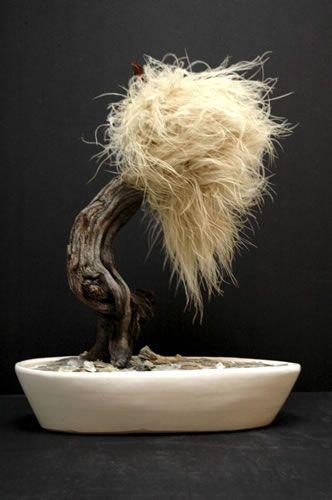 Balikesir Flower在您的家中,在您的办公室,在您的桌面上工作对于那些想要一棵非常古老的树的缩影的人来说非常特别。盆景迷你树等你
