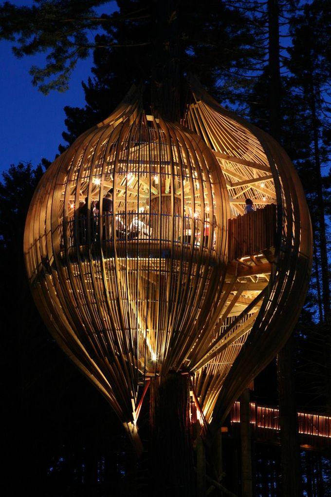 黄树屋餐厅/太平洋环境