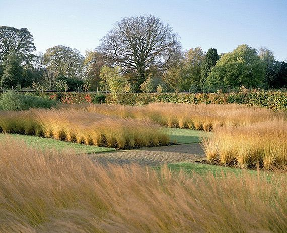 Formal garden with native grasses