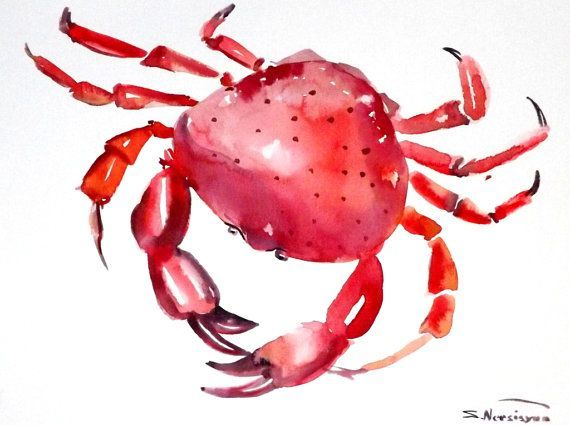 Red Crab original watercolor painting 9 X 12 in by ORIGINALONLY, $24.00