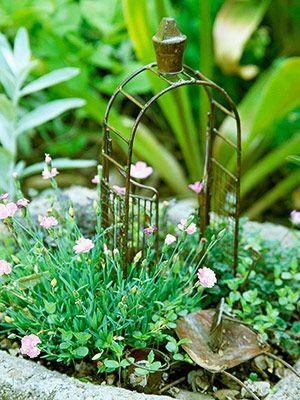 被称为仙境花园的微型植物景观令中西部园丁着迷。这是如何制作自己的。