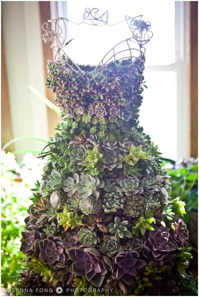 五种人体模型植物生长的五种实例