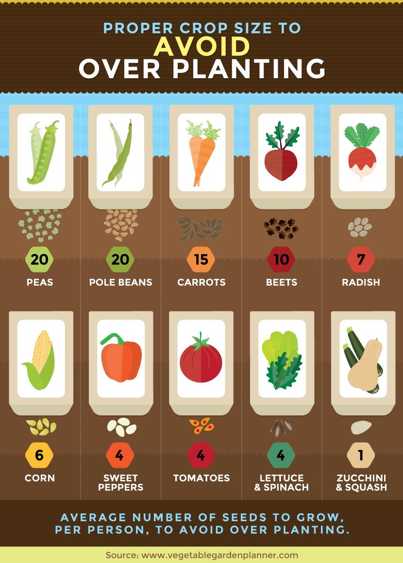 简单的园艺提示!低维护的园艺可以帮助繁忙的人仍然有一个花园。使用这些技巧,您可以种植一个维护量较低的花园,以减少园艺时间。