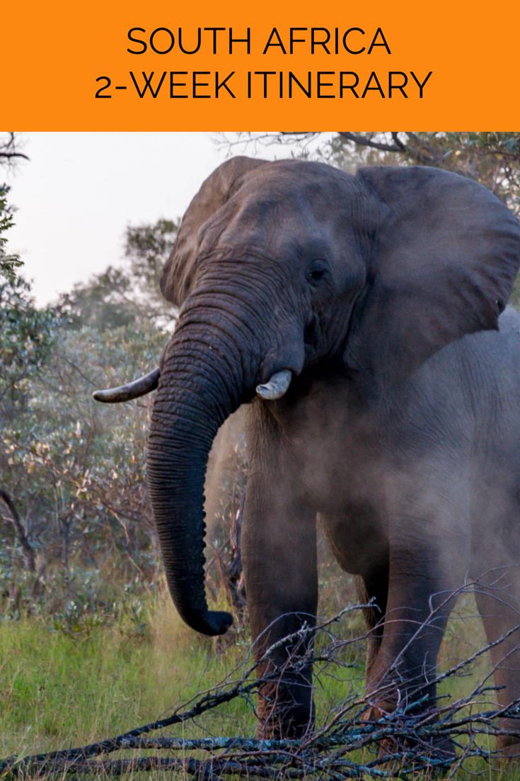 这个南非的行程包括两周内游览南非和维多利亚瀑布这个美丽国家的亮点。
