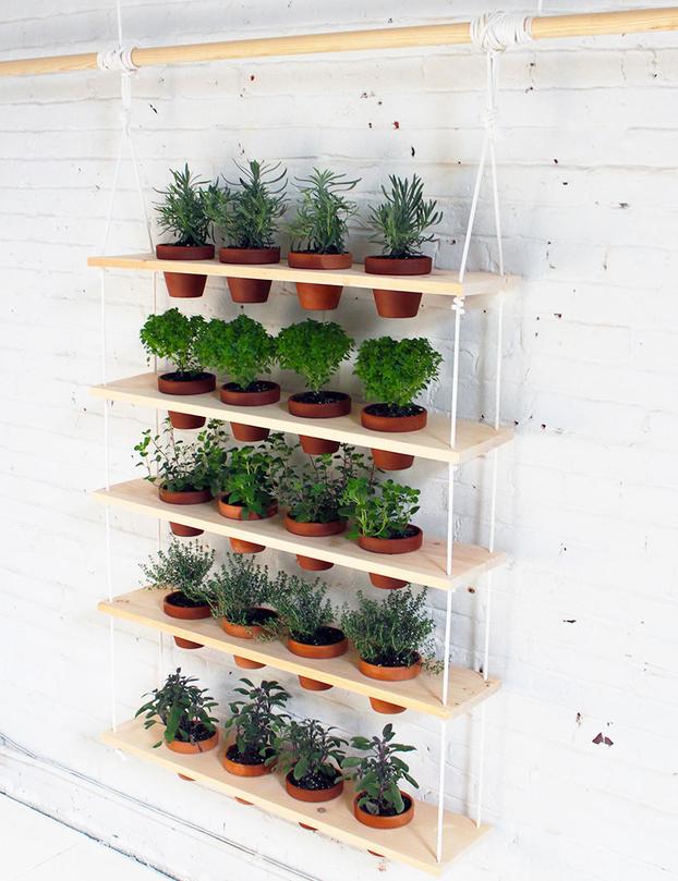 想知道如何建立一个吊草园?获取有关如何建立自己的DIY药草园的计划和分步说明。