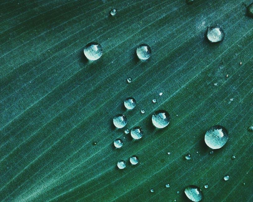 Macro Shot of Water Drop on Green Textile