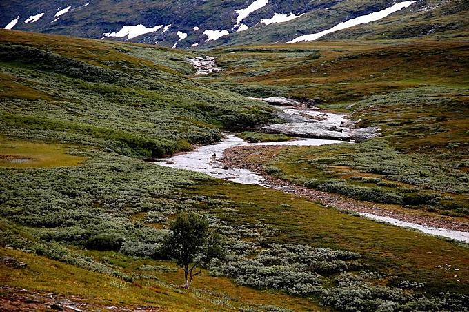 Stream at the Padjelanta National Park, UNESCO World Heritage