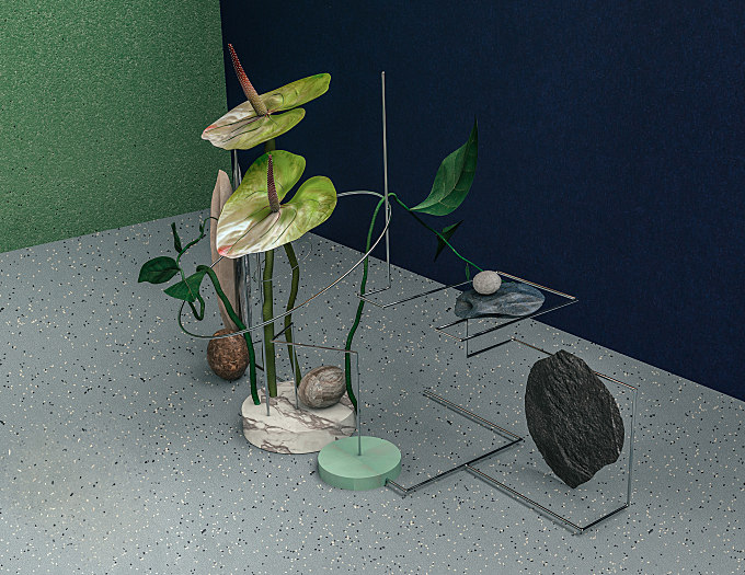 Geometry and Colour Collide in these Delightful Plant Compositions