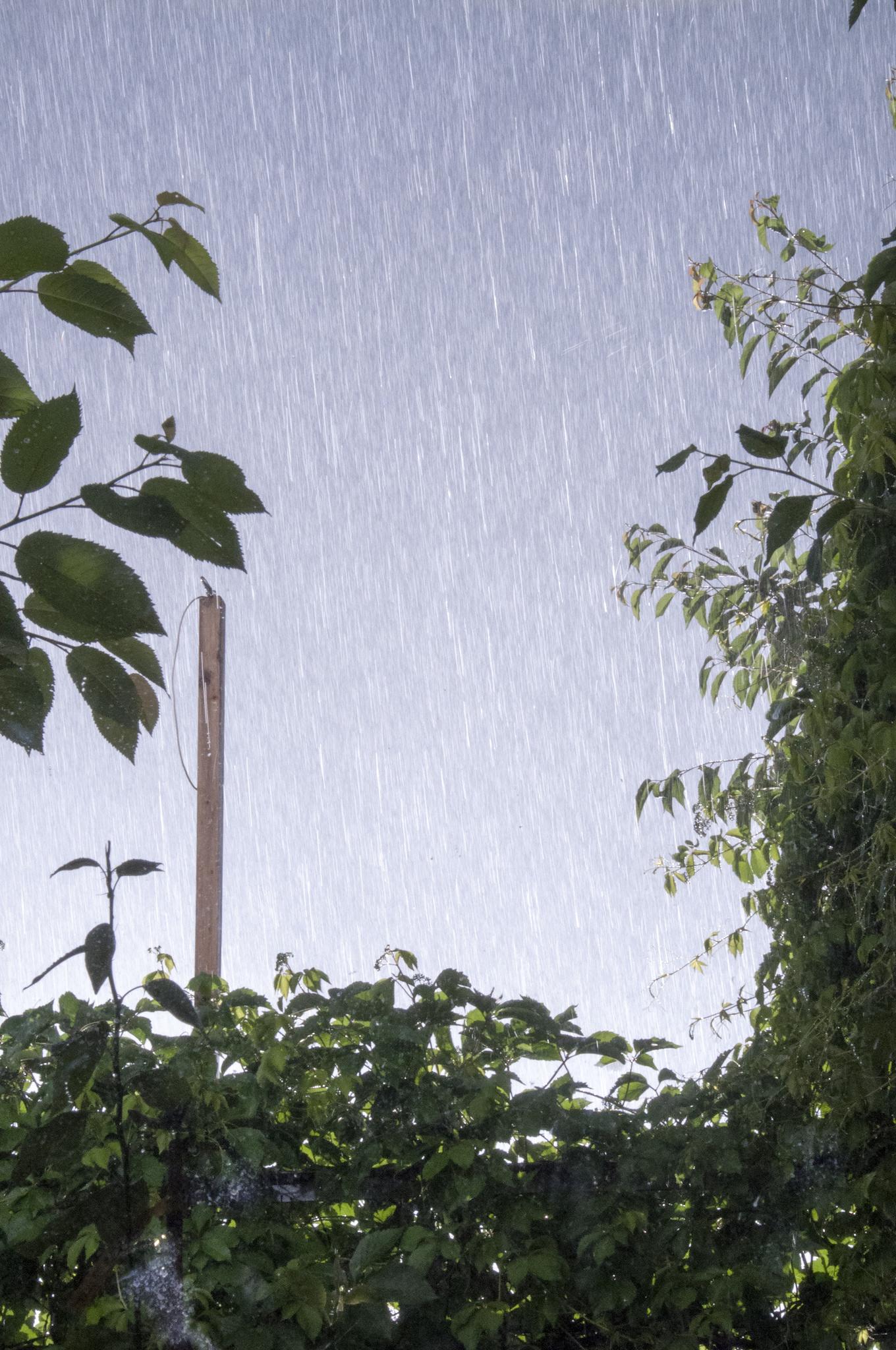 Heavy Rain by Sunshine