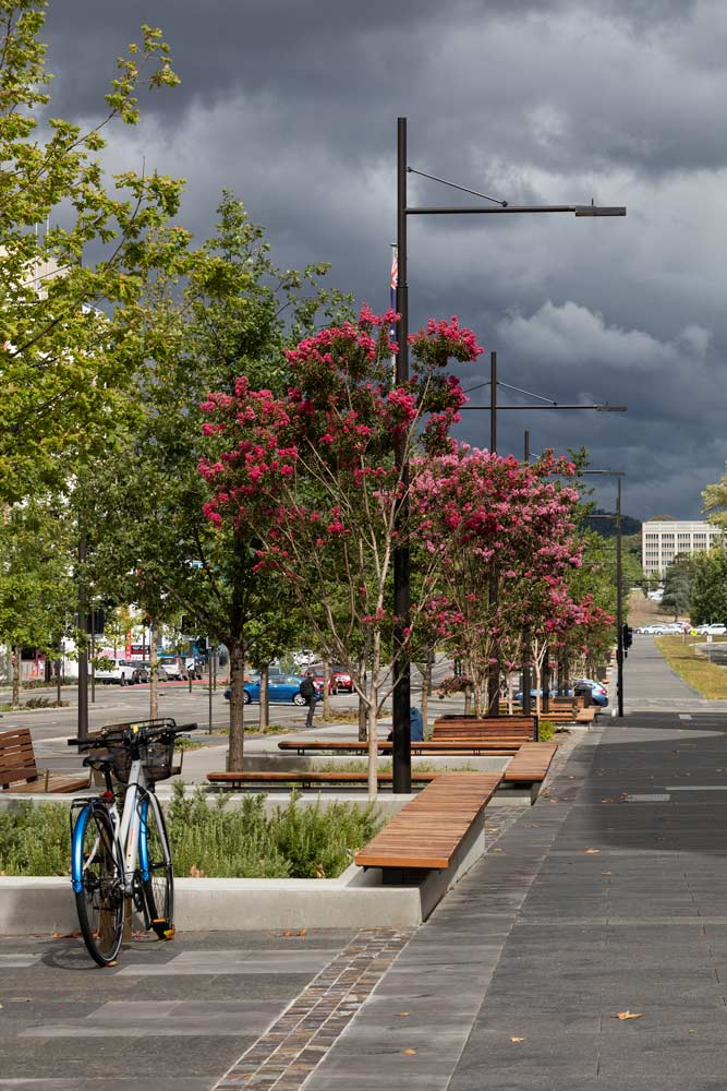 Constitution Avenue, Canberra, by Jane Irwin Landscape Architecture