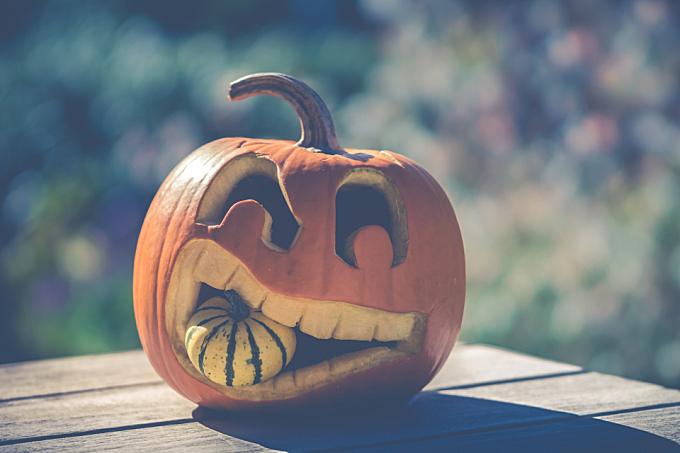 wallpaper,   carved,   halloween,   halloween pumpkin,   orange,   orange color,   pumpkin,   season,   seasonal,   autumn,   food,   vegetable