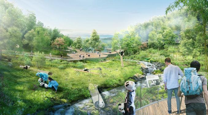 Sasaki creates master plan for Chengdu Panda Reserve November 5, 2018,AEDT