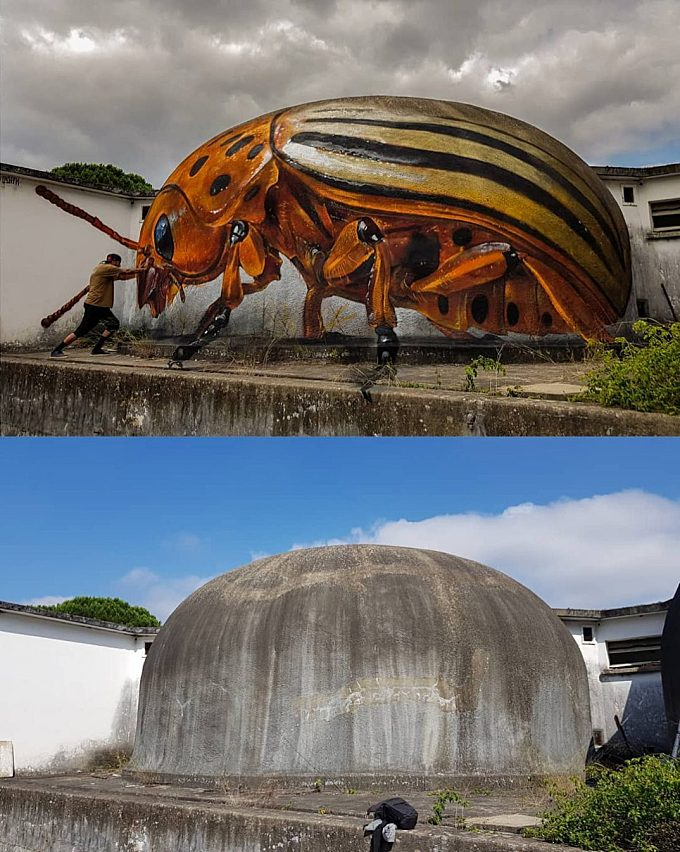 3D Illusions Insects In The Street's Walls