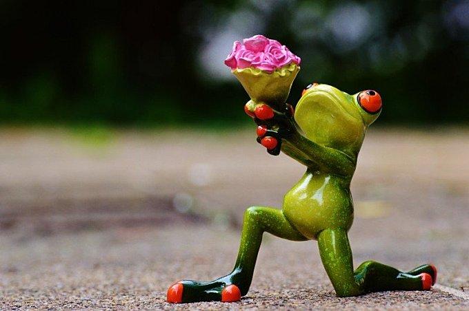 Figurine of kneeling frog with bouquet on street