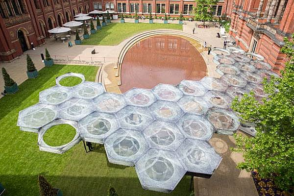 How Did Flying Beetles Inspire the V&A Museum's Courtyard?