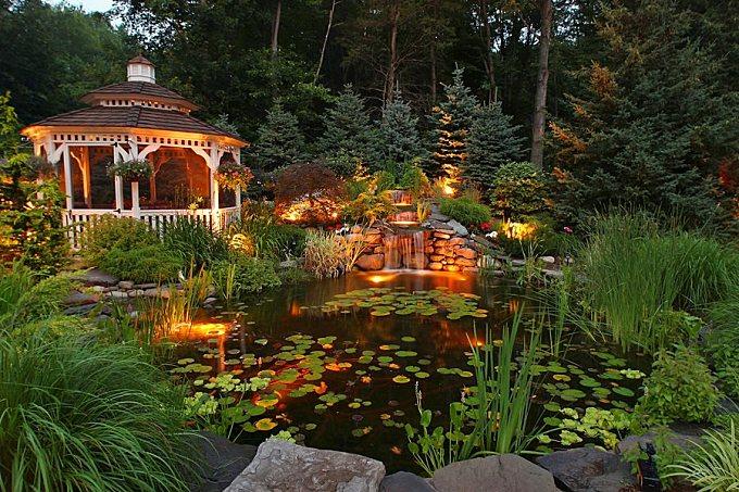 Koi Pond Design & Maintenance - Landscaping Network