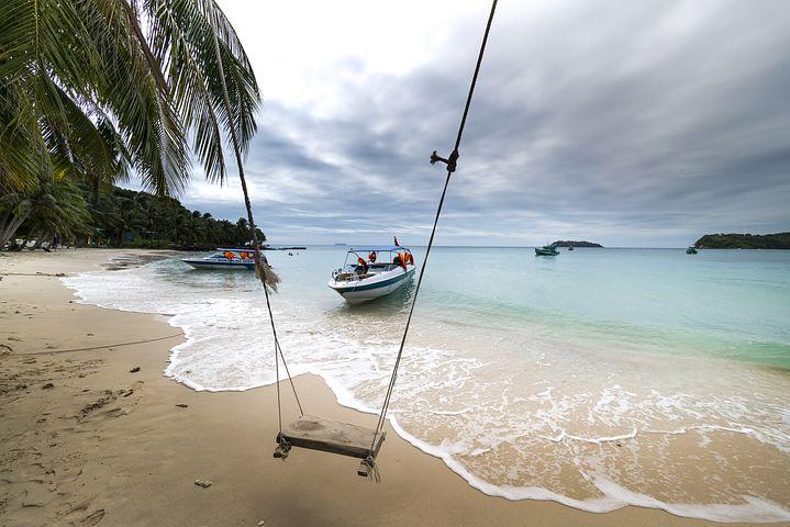 户外活动, 富国岛, 岛, 越南, 海滩, 热带, 摆动, 树, 绿