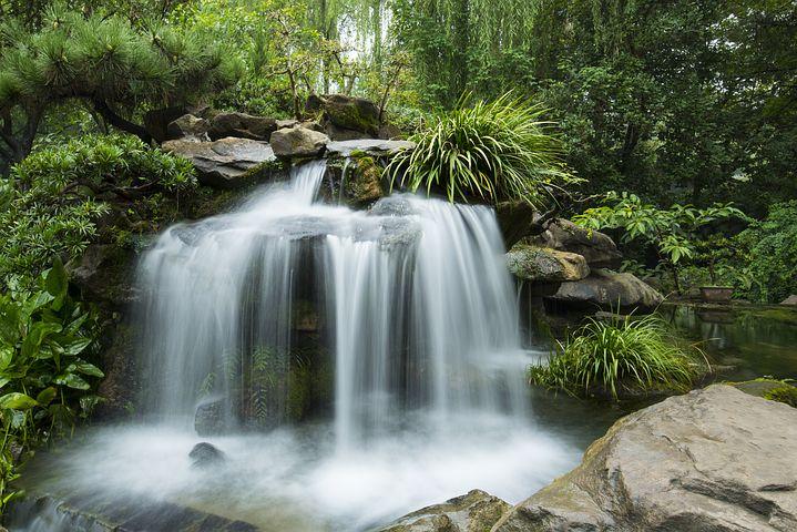 中国, 花园, 大瀑布, 喷泉, 设计, 景观, 池, 旅行, 植物