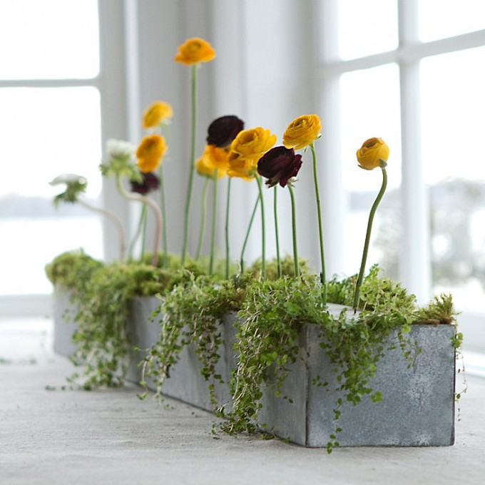 Hardscaping 101: Best Styles and Materials for Window Boxes
