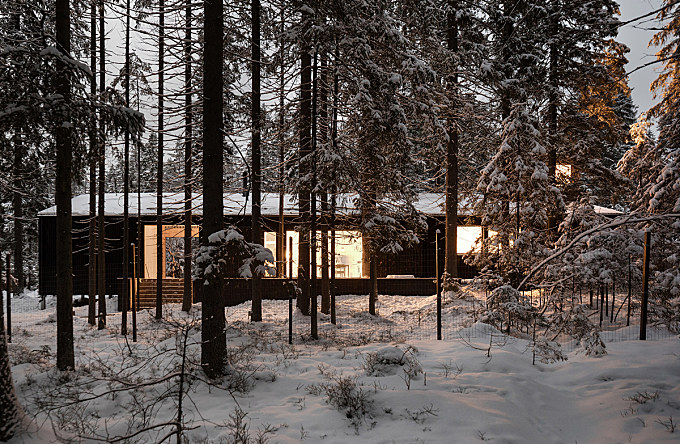 House for two artists