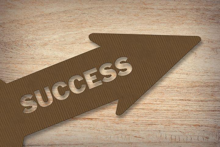 主意, 能力, 愿景, 目标, 市场营销, 计划, 启动, 职业生涯