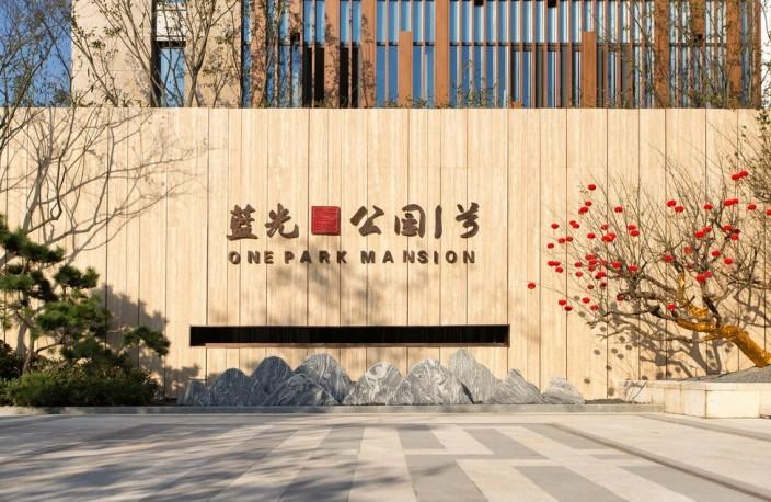 南京·蓝光公园一号 1