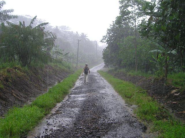 瓢泼大雨, 雨季, 萨摩亚, 异国情调, 南海, 大雨, 雨, 湿