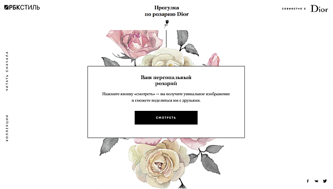 Roses for RBC & Dior